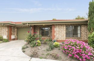 Picture of 4/2 Gilbertson Road, Seacliff Park SA 5049