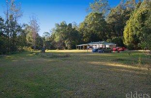 Picture of 88 AUSTINVILLE ROAD, Austinville QLD 4213