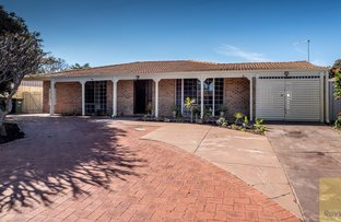 Picture of 7 Cable Close, Seville Grove WA 6112