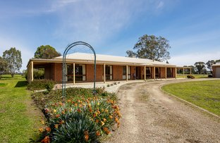 Picture of 187 North Road, Benalla VIC 3672