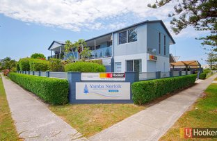 Picture of 38 Wooli Street, Yamba NSW 2464