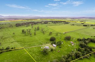 125 Cook Road, Marom Creek NSW 2480