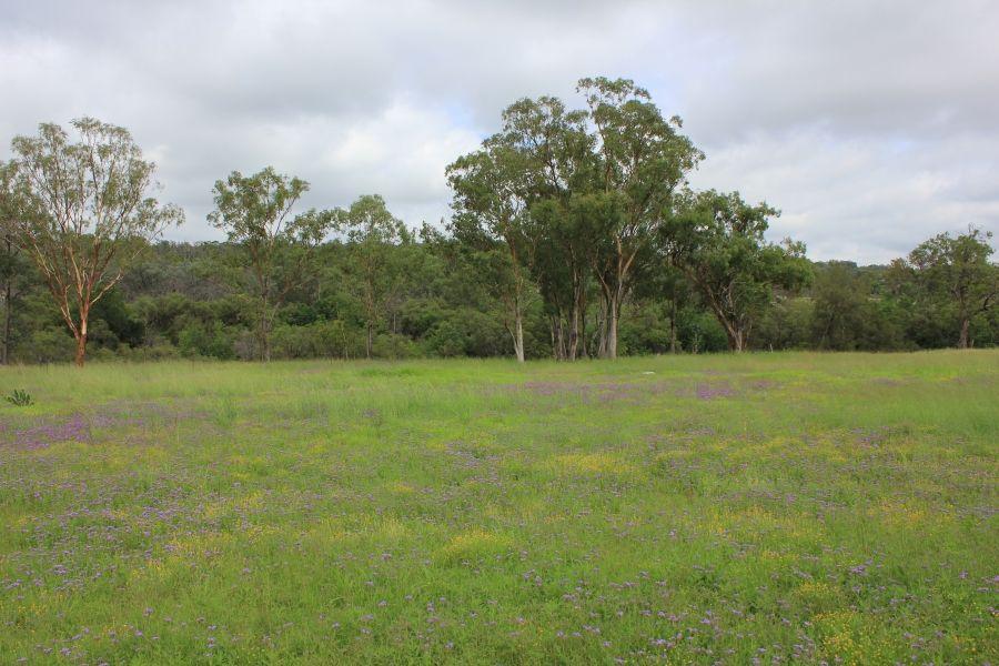 2175 Wallangra Rd, Ashford NSW 2361, Image 0