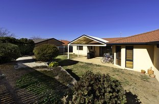Picture of 62 Shoalhaven Avenue, Amaroo ACT 2914