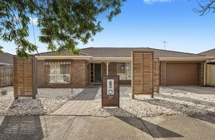 Picture of 37 Dorothy Street, Leopold VIC 3224
