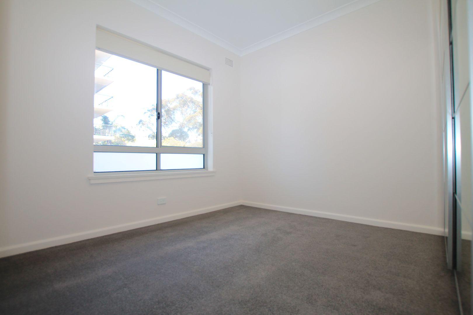 13/65 Penkivil Street, Bondi NSW 2026, Image 2