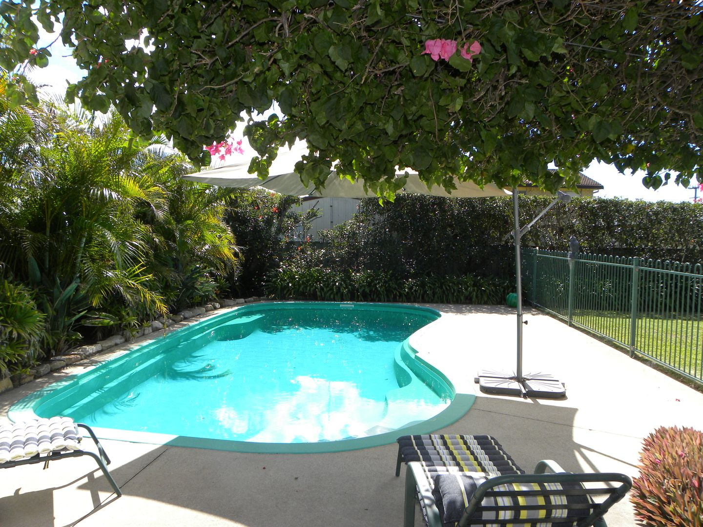 12 Lagoon Crescent, Sussex Inlet NSW 2540, Image 1