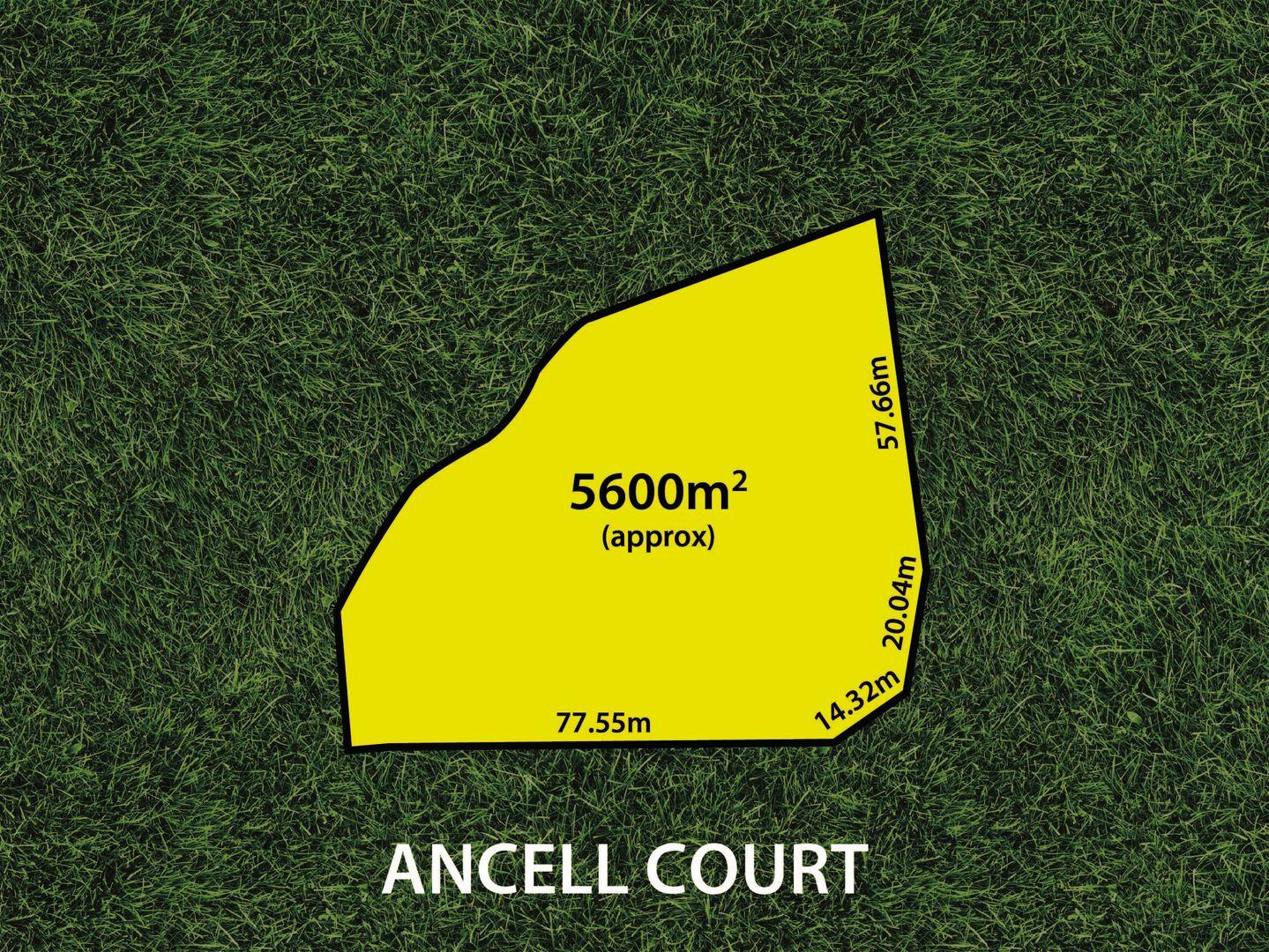 7 Ancell Ct, Valley View SA 5093, Image 2