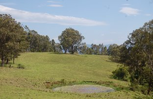 Picture of Lot 80 Duck Creek Road, Old Bonalbo NSW 2469