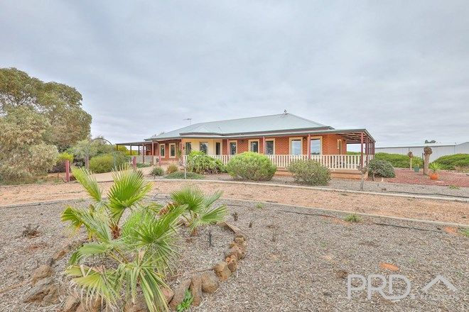 Picture of 329 Woomera Avenue, RED CLIFFS VIC 3496