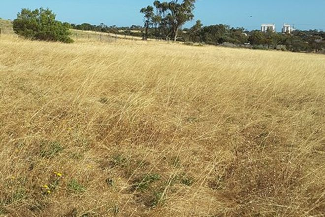 Picture of Section 67 Alcanabie Road, STREAKY BAY SA 5680