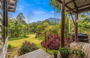 Picture of Lot2/3565 Kyogle Road, Mount Burrell NSW 2484