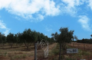 Picture of Lot 488 Pinery Road, Owen SA 5460