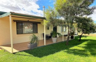 Picture of 24 Wittagoona Street, Cobar NSW 2835