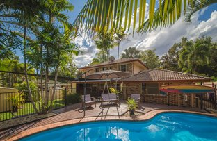 Picture of 11 Blue Gum Terrace, Frenchville QLD 4701