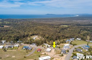 Picture of 6 Eastern Valley Way, Tallwoods Village NSW 2430