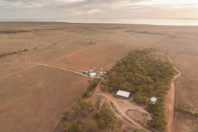 Picture of 57 Buggy Road, BAROOTA SA 5495
