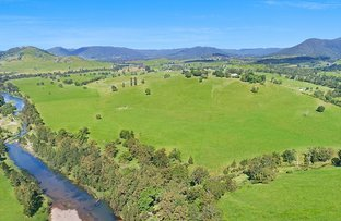 Picture of 2138 Maleny Kenilworth Road, Conondale QLD 4552