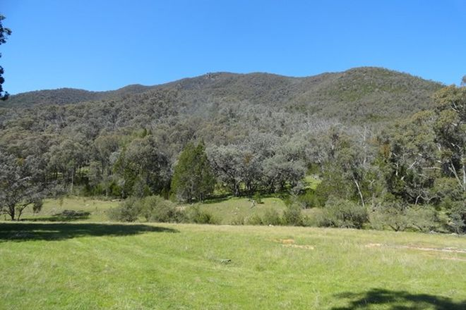Picture of Stockyard Creek Track, THOLOGOLONG VIC 3691