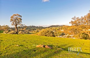 Picture of 17-25 Moculta Road, Angaston SA 5353