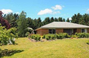 38 Martins Lane, Kentucky NSW 2354
