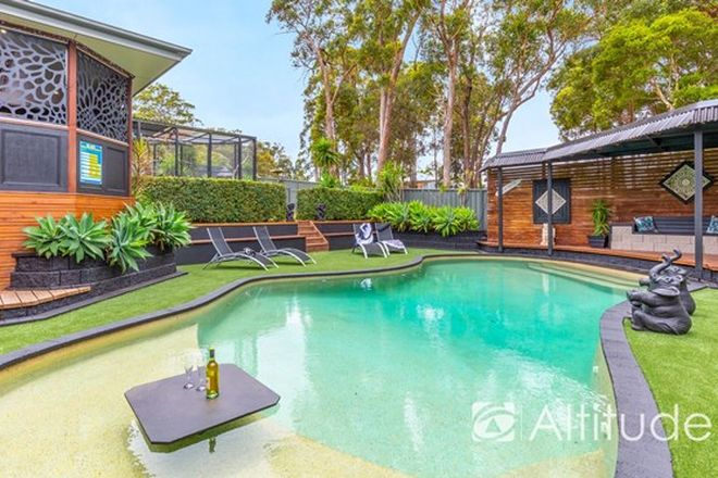 Picture of 3 Brushtail Place, BELMONT NSW 2280