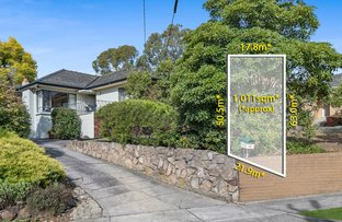 Picture of 12 Alvie Road, Mount Waverley VIC 3149
