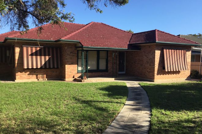 Picture of 1 Grigg Court, CLARENCE GARDENS SA 5039