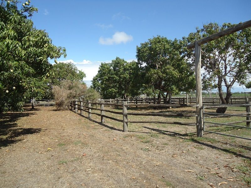 19 Dudley Rd, Proserpine QLD 4800, Image 2