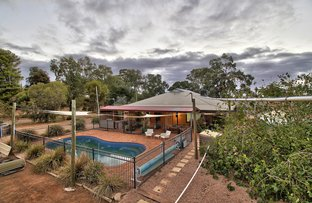 Picture of 76 Chowilla Street, Renmark SA 5341