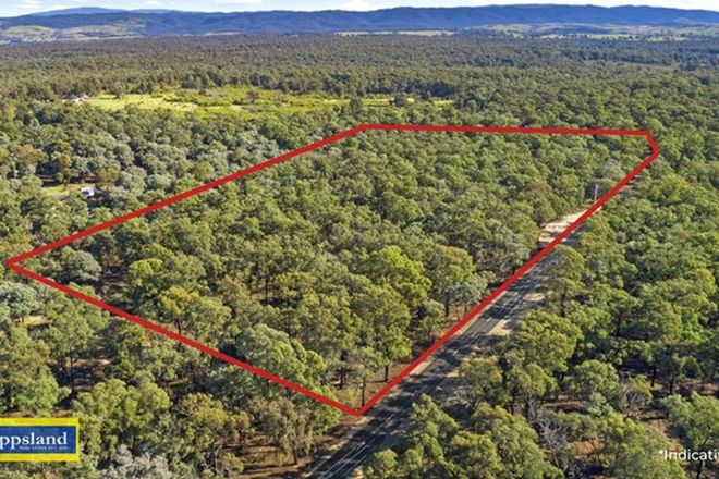 Picture of Lot 1 Licola Road, HEYFIELD VIC 3858