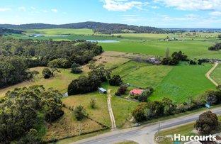 Picture of 25498 Tasman Highway, St Helens TAS 7216