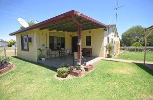 Picture of 5 Cobboco Road, Eumungerie NSW 2831