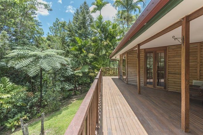 Picture of 58 Maple Road, Cow Bay, DAINTREE QLD 4873