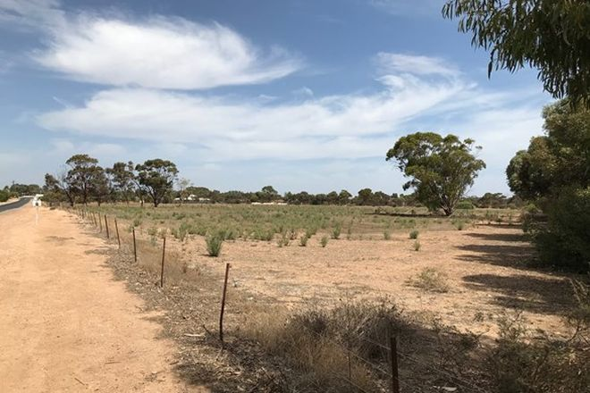 Picture of Section 1494 Agery Road, KADINA SA 5554