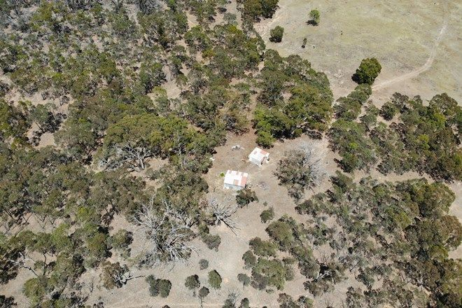 Picture of 552 Spring Flat Road, CROWLANDS VIC 3377