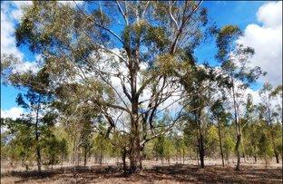 Picture of 260 Cypress Road, Kumbarilla QLD 4405