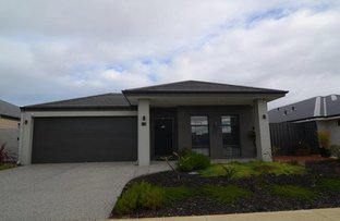 Picture of 12 Cogita Avenue, Baldivis WA 6171