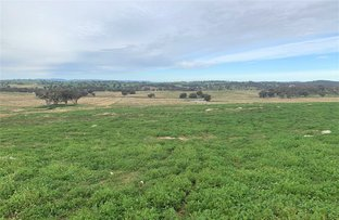 """Picture of """"Broadwater"""" Broadwater Road, Yeoval NSW 2868"""