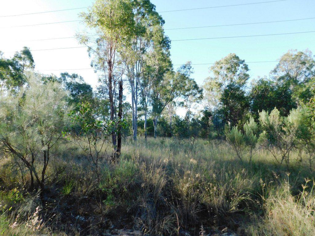 Lot 27 Memerambi Barkers Creek Road, Nanango QLD 4615, Image 2