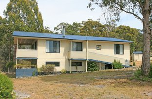 Picture of 88 Acacia Drive, Ansons Bay TAS 7264