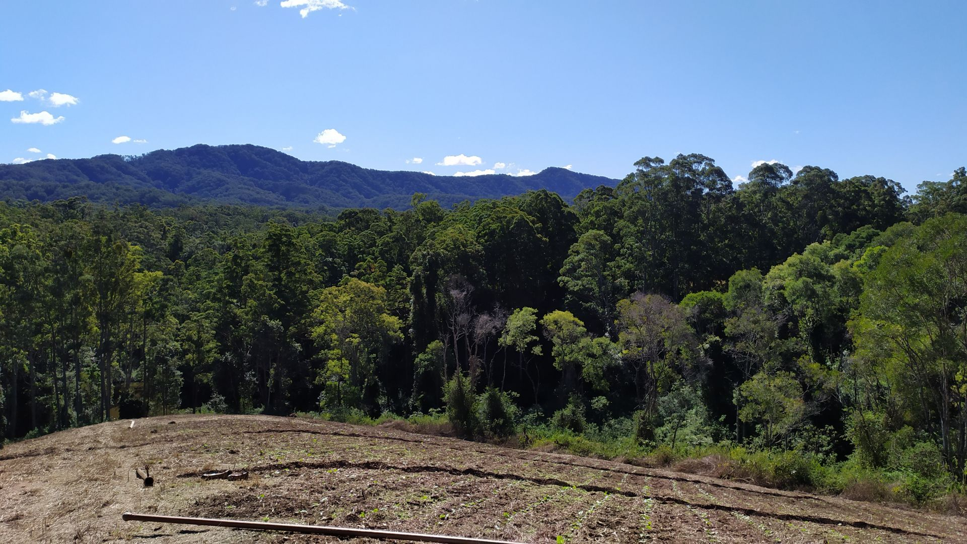 1448 Valla Road, Newee Creek NSW 2447, Image 1