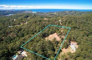 290 Hillside Road, Avoca Beach NSW 2251