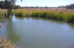 Picture of Gladstone Monto, Monto QLD 4630
