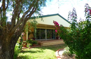 Picture of 43 Miscamble Street, Roma QLD 4455