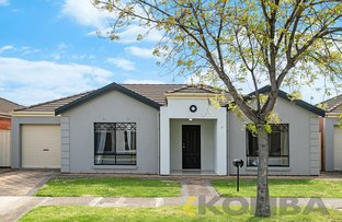 Picture of 7 St Albyns Street, Findon SA 5023