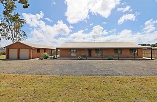 Picture of 12 Winnifred Court, Elimbah QLD 4516