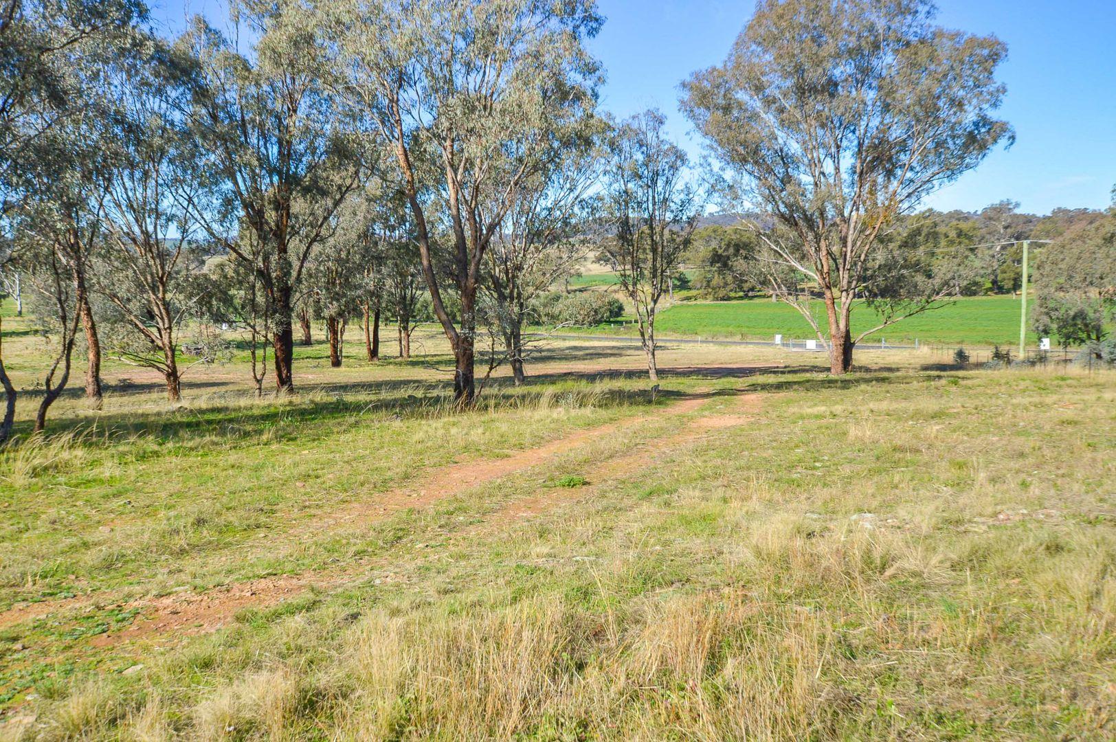 180 Lesters Lane, Mudgee NSW 2850, Image 2