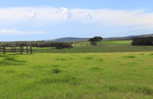 Picture of 378 Hazelvale rd North, Denmark WA 6333