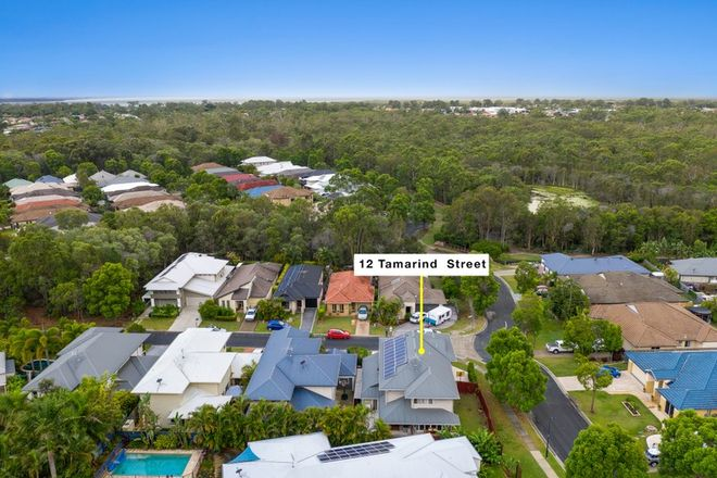 Picture of 12 Tamarind Street, NORTH LAKES QLD 4509